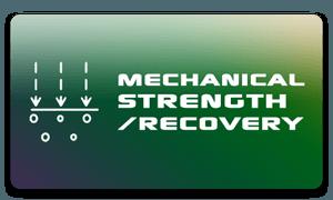 Resistencia mecánica / Recuperación